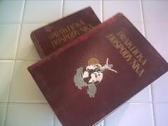 Fotka k inzerátu Kniha Praktická hospodyňka, 2 díly, 1928 / 1085586